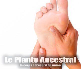 le-planto-ancestral-mini