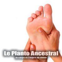 le-planto-ancestral-small-feature