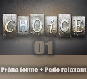 the-choice01_mini