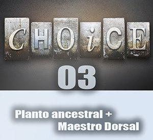 the-choice03_mini